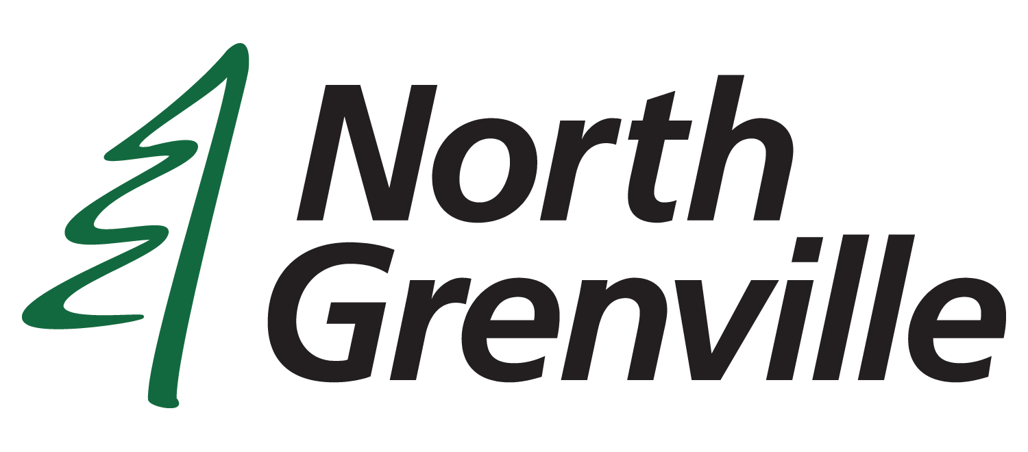 NG logo colour